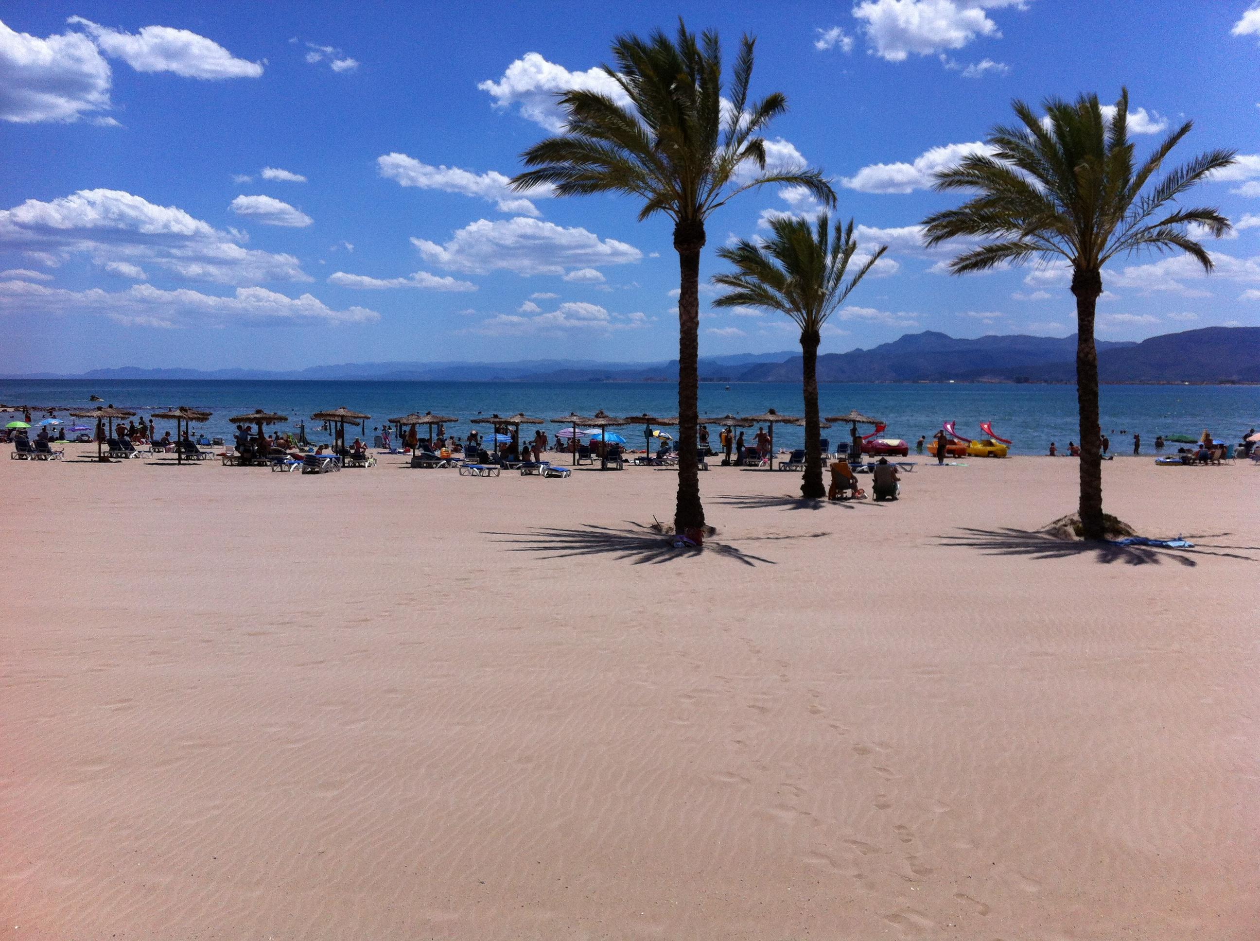 Playa de Los Olivos