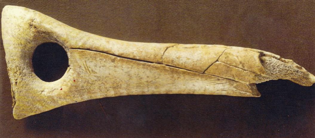 Bastón de mando en hueso de época Magdaleniense. Museo de Prehistoria de Valencia.
