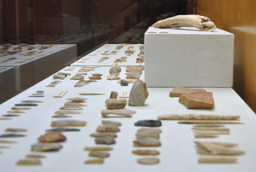 Vitrina Museo de Prehistoria