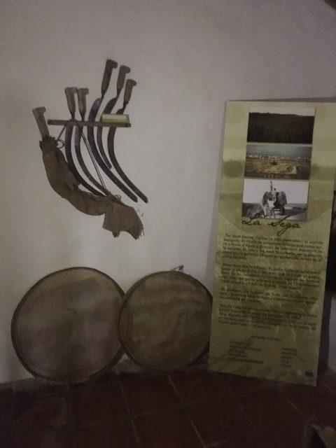 Herramientas Museo del Arroz Cullera