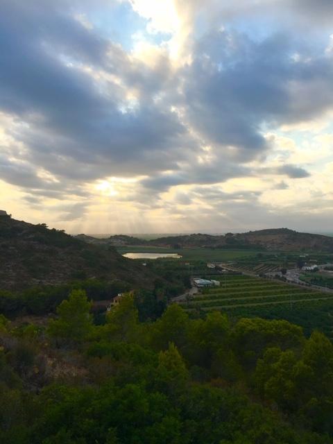 Vista al anochecer de la Bassa de Sant Llorenç
