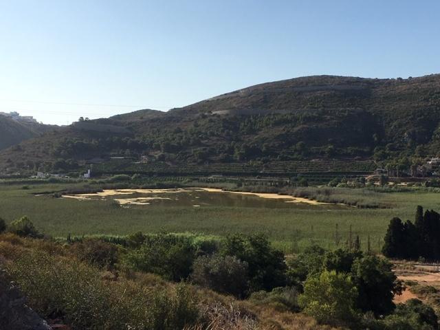 Bassa de Sant Llorenç desde el promontorio del Cabeçol